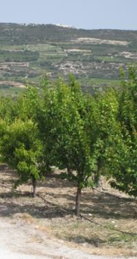 Fietsen op Cyprus