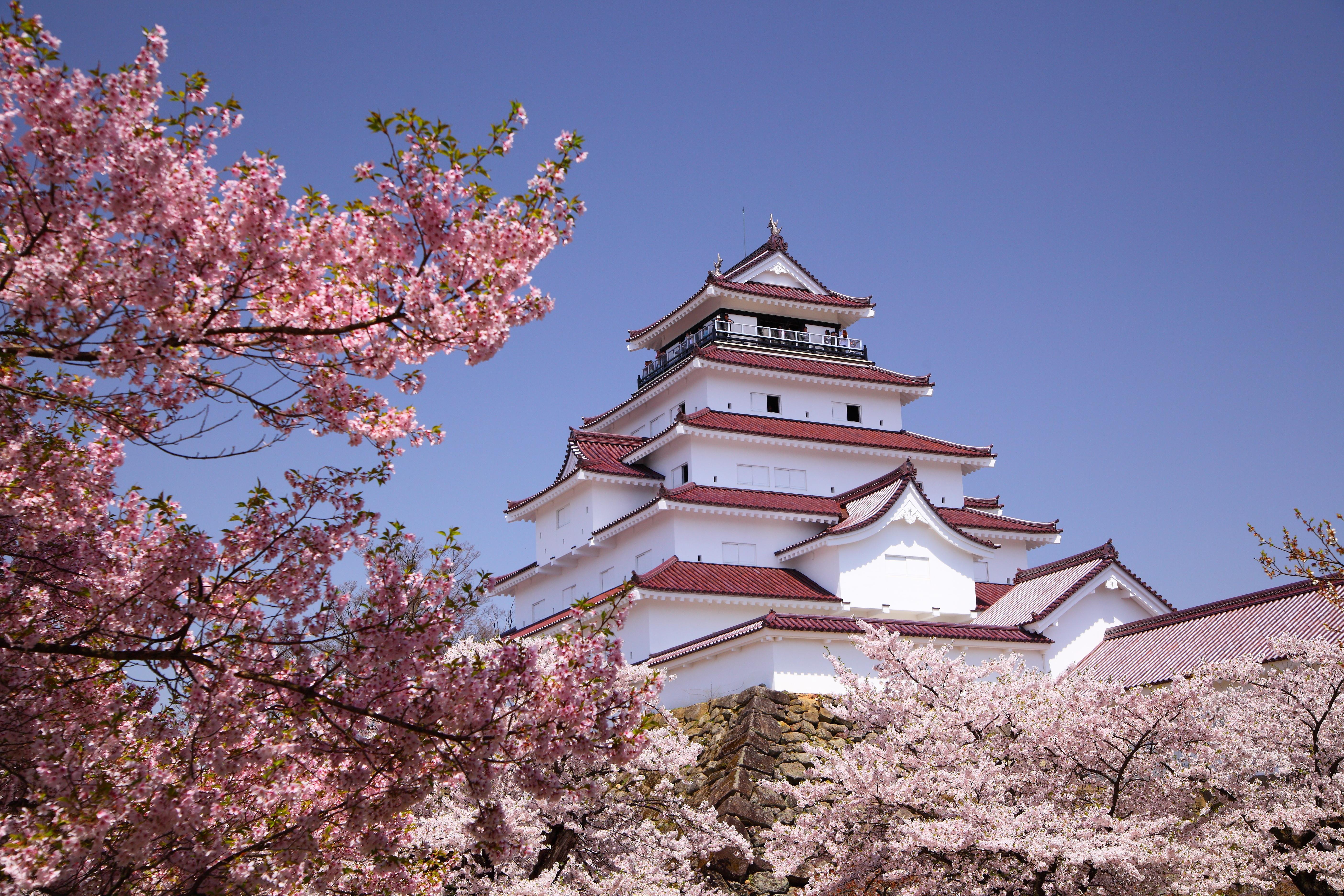 japan bloesemtijd 2018
